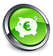 Piggy bank (euro) icon 3D green button
