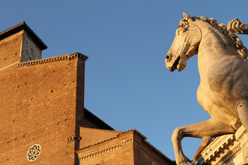 Cavallo, Campidoglio - Roma II