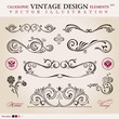 Vector set classic. Calligraphic design elements ornament decora