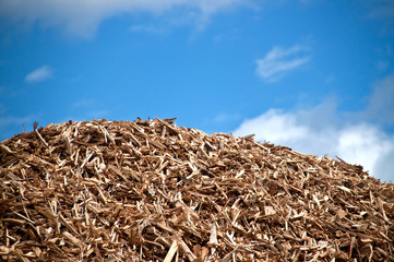 Pile of biomass