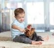 cute kid feeding pet dog york