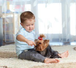cute kid feeding pet dog york