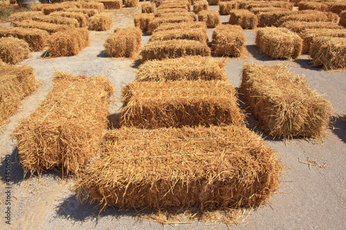 seat on straw