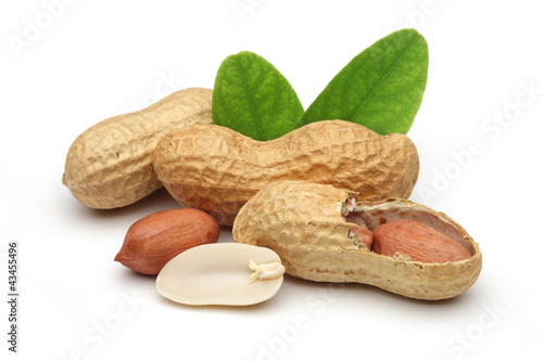 peanuts and leaves