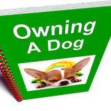 Owning A Dog Book Shows Canine Care Advice
