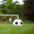 Symbolfoto Fußball auf Rasen