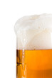 Beer in a glass on white