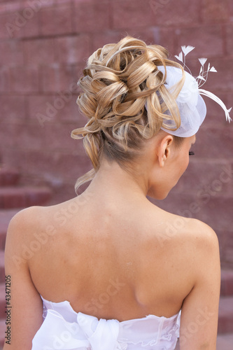 Back view of elegant wedding