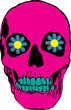 pink psychedelic skull illustration