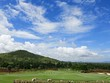time lapse shot of golf course with could and blue sky