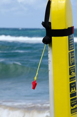 Red whistle and yellow equipment of beach guard at Lydgate Beach