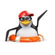 3d Penguin in baseball is rescued