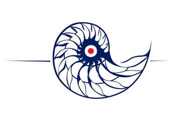 spiral helix shell