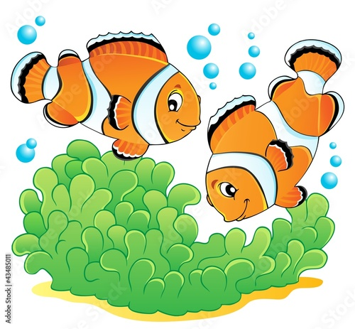 Clown fish theme image 1