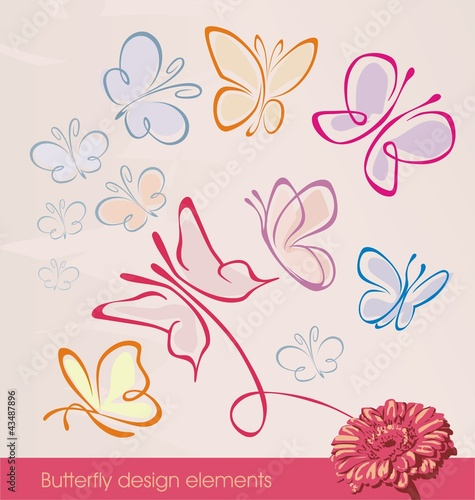 Set of butterfly design elements
