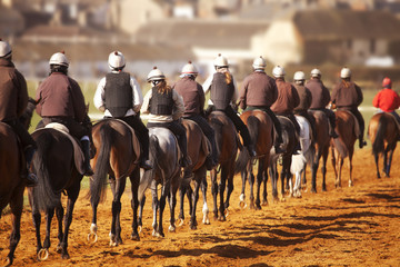 Racehorses in training
