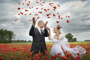 Newlyweds in blooming poppy fields, throwing  petals overhead