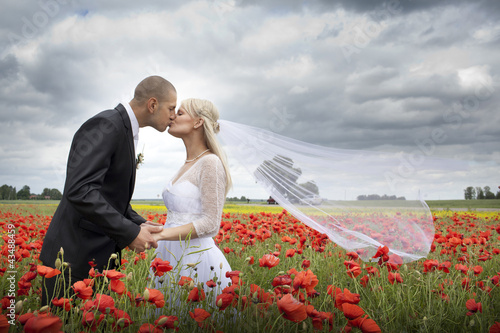 Newlyweds kissing in blooming poppy fields