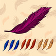 colorful feathers on background with feathers
