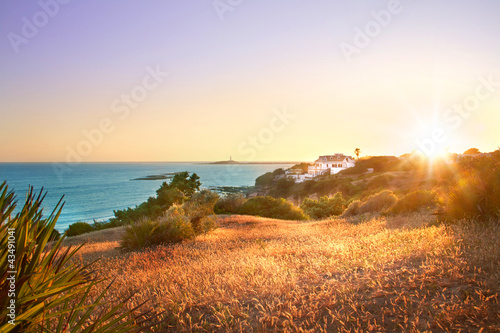 Sunset beach landscape