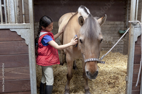 Little girl brushing her favorite horse