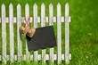 Herzen am Zaun mit Schiefertafel
