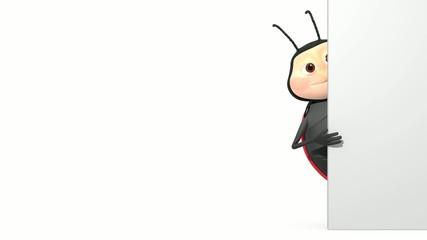 ladybird behind wall
