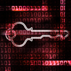 security key and binary code