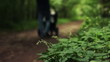 Father  with child in stroller walks in park, defocused, HD