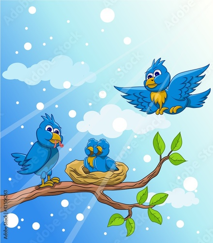 blue bird with a family background of the snow