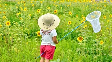 ひまわり畑で遊ぶ少女