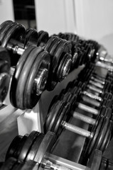 Weight training equipment in fitness club © dmitrimaruta