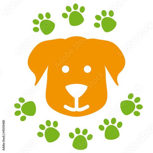 Hund und Pfotenabdrücke Hundeschule Gassi gehen