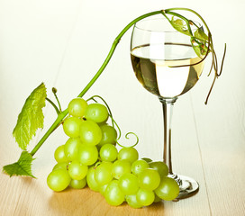 Branch of green grapes and glass of wine