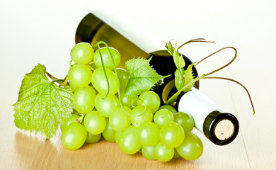 Bottle of seasoned white wine and branch of green grapes