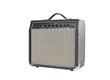 Vintage Grungy Guitar Amplifier
