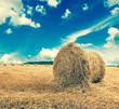 Straw bales on farmland with blue cloudy sky