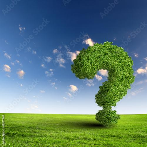 Green grass question mark