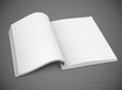 open spread of book with blank white pages vector illustration