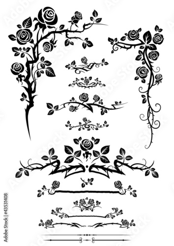 Сalligraphic elements set with roses.