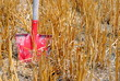 red shovel in a wheat field