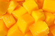 アップルマンゴーのアップ素材