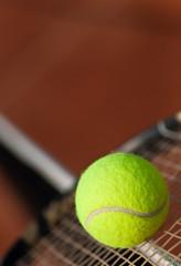 Ein Tennisball auf einem Tennisschläger