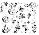 Fototapety Elegant floral design