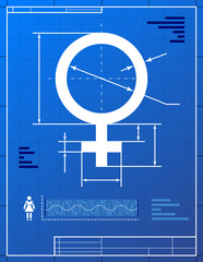 Female symbol. Stylized drawing of woman sign on blueprint paper