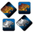 tiger icon set