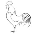 rooster outlines