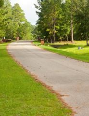 Street in Residential Neighborhood