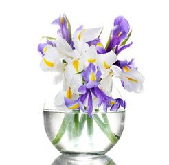 Beautiful bright irises in vase isolated on white