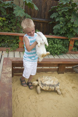 Boy playing with rabbit and turtle in sandbox
